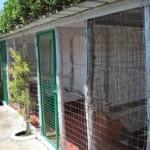 Pensione per gatti Casa Luca