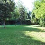 Casa Luca - Pensione per Cani - area libera